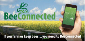 BeeConnected Image