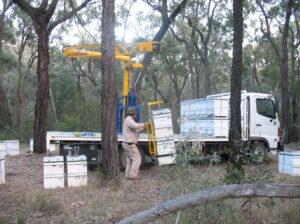 Loading hives onto truck to transport to another apiary site